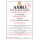 Novelty ASBO Certificate for the Offence of:  Bad Driving