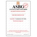 Blank Pack of 2 (DIY) Novelty ASBO Certificates