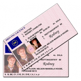 Rodney Trotter Novelty Driving Licence - Only Fools and Horses