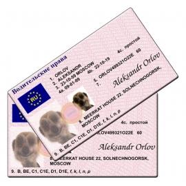 Aleksandr Meerkat Novelty Driving Licence